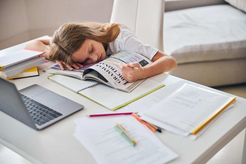 sömestr tatilinde ödev yetiştirmeye çalışan kız çocuk